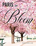 img - for Paris in Bloom book / textbook / text book