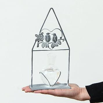 LINGZHIGAN Kreative Hydroponischen Glasflasche Dekoration Wohnzimmer  Tischdekoration Vase