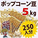 ポップコーン豆マッシュルームタイプ 500g ( 約25人分 )