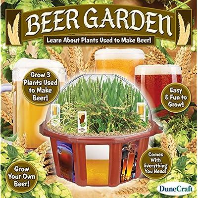 Dunecraft Beer Garden Domed Terrarium: Toys & Games