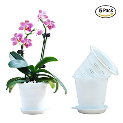 Image Unavailable. Image not available for. Color Meshpot 3 Inches Orchid Pot Plastic ...  sc 1 st  Amazon.com & Amazon.com: Meshpot 3 Inches Orchid Pot Plastic Succulents Pots ...