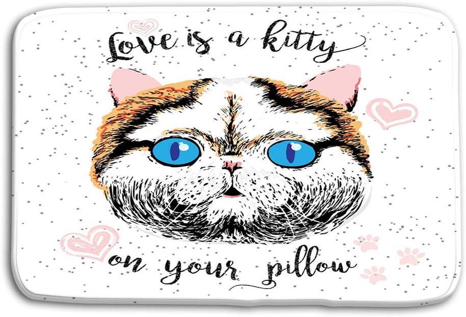 vbndgfhjd Doormat Indoor Outdoor Love Kitty Your Pillow Love Quote ...