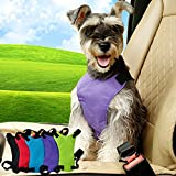 PespPet Adjustable Safety Harness with Car Seat Belt,Pet Dog Safety Vest Harness,Travel Strap Vest Harness S M L (Purple, Small)