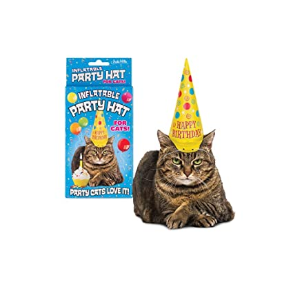 Amazon Archie McPhee Inflatable Party Hat For Cats Pet Supplies