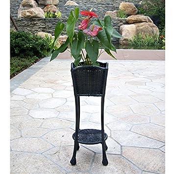 Novelty Plant Stand Color: Black