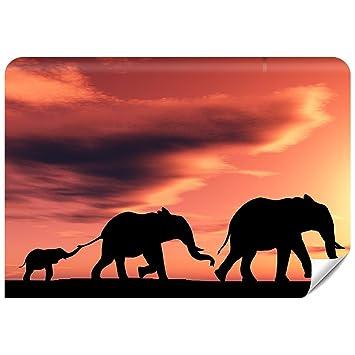 Demur Fototapete Vlies Afrika - Tapete Tapeten Fototapeten Für Schlafzimmer  FDB325 (XS - 220 x 154 cm)