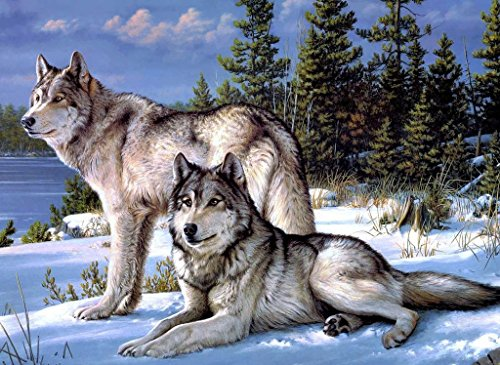 500 Piece Hard Puzzle Large Size : Wolfs In Snow Winter Painting