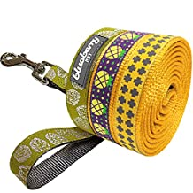 Blueberry Pet 3/8-Inch by 6-Feet Yummy Summer Sunny Pineapple Nylon Dog Leash for Puppy, X-Small Dog Lead