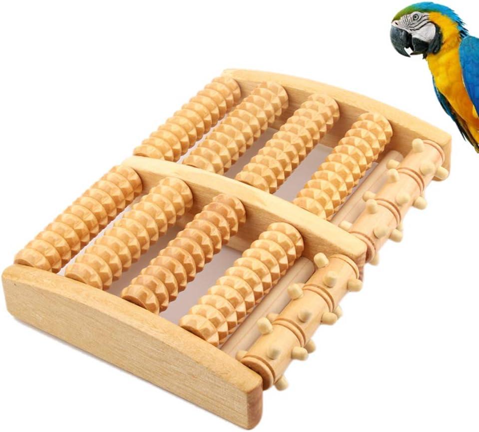 Enterrific Pet Bird Toys Rodillo de Madera Cinta de Correr ...