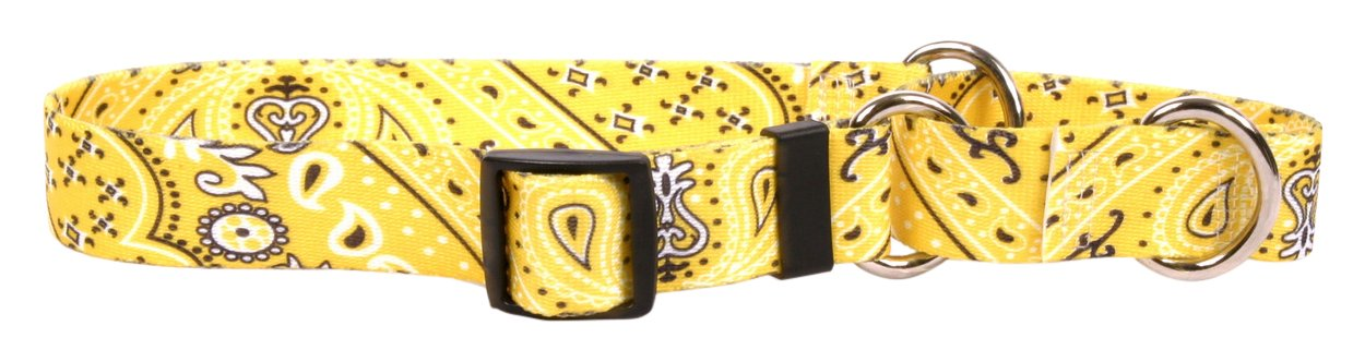 Yellow Dog Design Bandana Yellow Martingale Dog Collar 1'' Wide And Fits Neck 14 To 20'', Medium