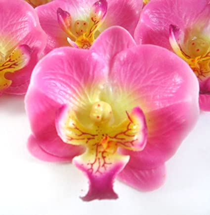 Amazon 12 small pink phalaenopsis orchid silk flower heads 12 small pink phalaenopsis orchid silk flower heads 2quot artificial flowers mightylinksfo