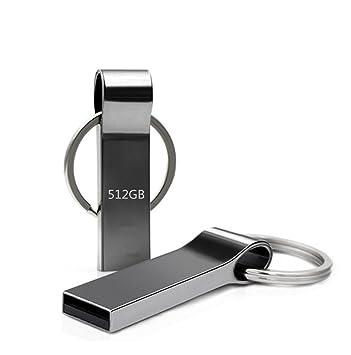 Amazon.com: Metal 512 GB unidad flash USB 2.0, 2,5), color ...