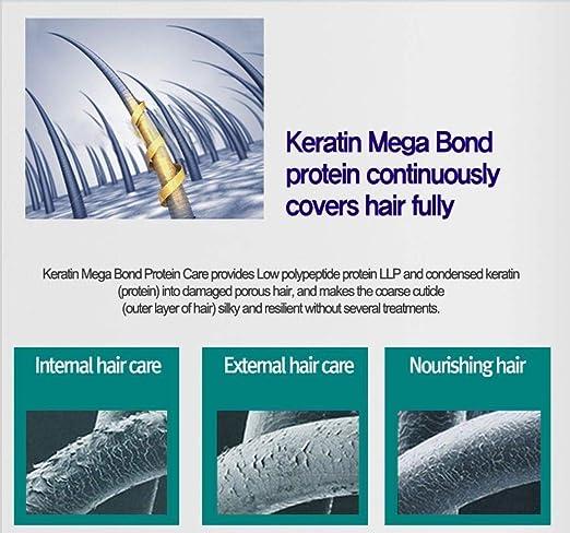 Amazon.com : Ampollas Para El Cabello Maltratado Tratamiento De Proteina Y Keratina Brillo : Beauty