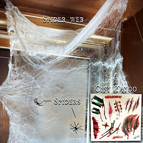 Spider Web Decoration.Halloween Stretch Spider Webbing.White Spider Webs Set.Fake Spiders.Tattoo Scar Makeup (Halloween Makeup Web)