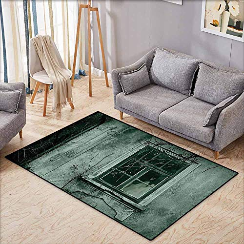 Pet Rug,Horror House Decor,View of a Dramatic Haunted House Creepy Environment Mystery Rear Window Theme,Extra Large Rug,3'3