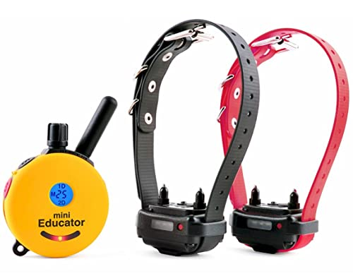 Educator-ET-302-Two-Dog-Mini-1/2-Mile-E-Collar-Remote-Dog-Training-Collar-With-Vibration