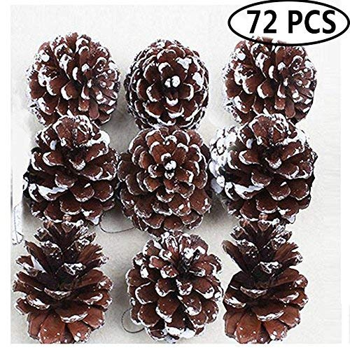 Outgeek Party Hanging Ornaments, 72 Pack Natural Pine Cone Pendant Set Wood Frosted Pinecone Ornaments for Kids Theme Party Wedding Garden Home Tree ()