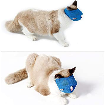 Amazon.com : Leegoal Nylon Cat Muzzles, Face Mask for Cat, Preventing Scratches and Anti-Biting During The Shower, Cat Grooming Tools : Pet Supplies
