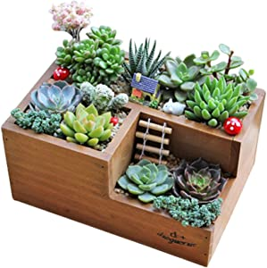 LSHCX Wooden Succulent Flower Planter Box Desk Organizer Pencil Holder