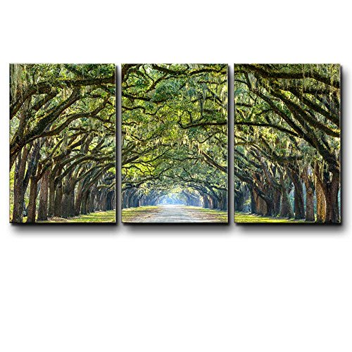 Three Piece Path Under an Arc of Trees with Leaves Dangling from the Branches on 3 Panels