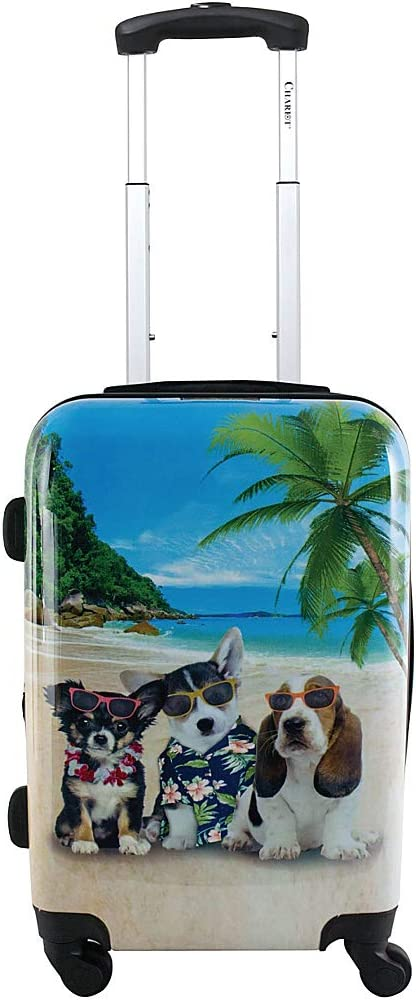 Chariot 20 Lightweight Spinner Carry-on Upright Suitcase-Kona
