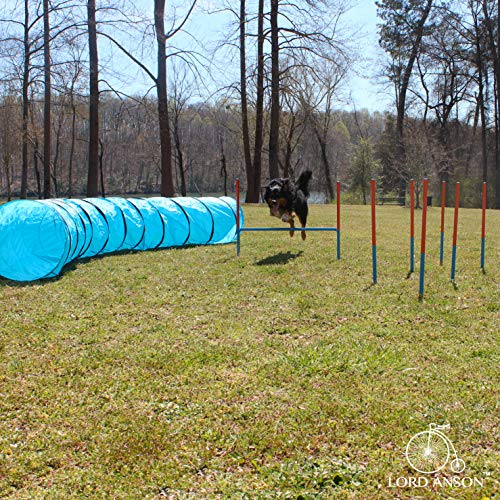 Lord AnsonTM Dog Agility Set - Dog Agility Equipment - 1 Dog Tunnel, 6 Weave Poles, 1 Dog Agility Jump - Canine Agility Set for Dog Training, Obedience, Rehabilitation