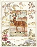 Derwentwater Wildlife série Cerf Kit point de croix compté Motif Aida 14fils/cm²