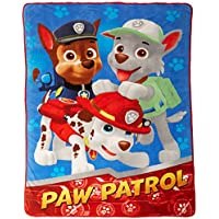 PAW Patrol All Paws on Deck Micro Raschel Blanket