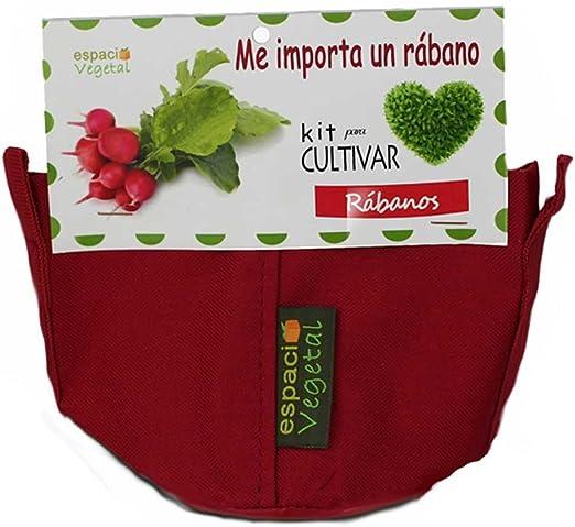 Kit cultivo rábanos. ME IMPORTA UN RÁBANO: Amazon.es: Jardín