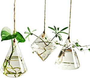 Indoor Outdoor Glass Hanging Planters Plant Pots Water Plant Containers Flower Pots Glass Terrariums 3 Pieces