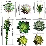 Supla-Pack-of-14-Assorted-Artificial-Succulents-Picks-Textured-Aloe-Faux-Succulent-Pick-Succulent-Stems-Fake-succulent-bouquet-String-of-Pearls-Succulent-Faux-Succulent-Floral-Arrangement-Accent