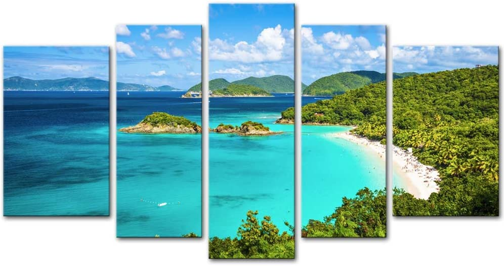 Wall Art Decor Poster Painting On Canvas Print Pictures 5 Pieces Trunk Bay St John Virgin Islands United States Seascape Beach Framed Picture for Home Decoration Living Room Artwork