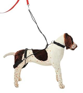 Hannadees Horgan Harness No Pull Back Leg Dog Harness, Medium ...