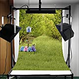 3x5ft Lfeey Vinyl Photography Background Backdrops Lawn Grass Mail Box Road Sign Toy Bear Outdoor Have a Picnic Nature Scenery Tree Pure Green Hope Vigour Studio Photo Props 1x1.5m Customzied THIN FOLDED