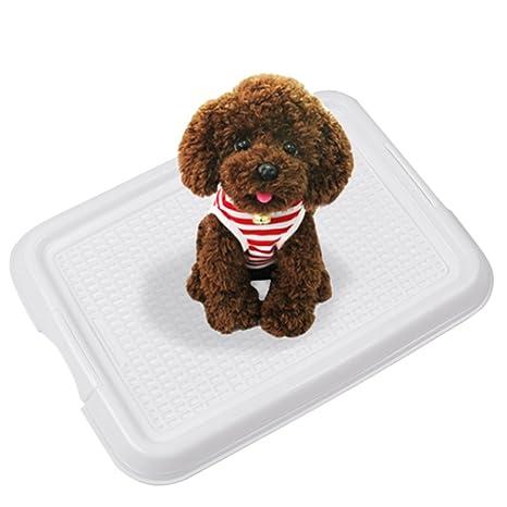 Pet interior baño kwock® Malla formación orinal para perros y gatos mascota pad soporte para