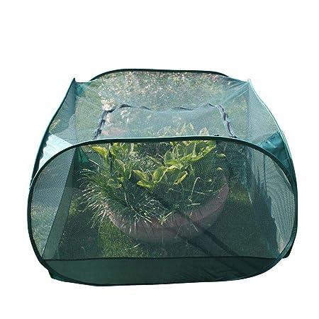 SinceY Garden Net, Jaula Protectora para Frutas Y Verduras ...