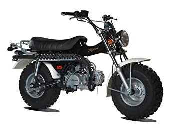 Mini moto skyteam t rex 125 black amazon car motorbike mini moto skyteam t rex 125 black voltagebd Images
