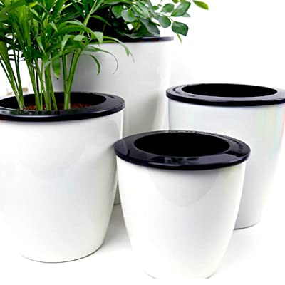 Mkono 3 Pack Self Watering Planter African Violet Pots Plastic White Flower Plant Pot with Wick Rope for All House Plants, Flowers, Herbs, M : Garden & Outdoor