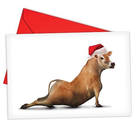 Amazon.com : B6545EXSG Box Set of 12 Bovine Nirvana Christmas Card ...