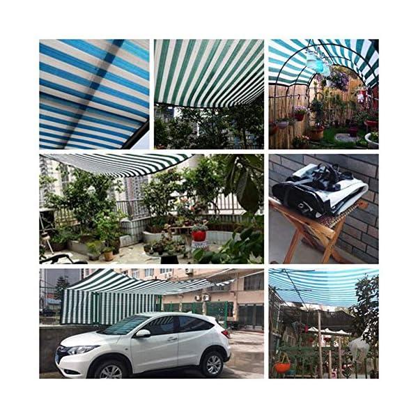Telo protettivo per protezione solare in polietilene rinforzato, 1 metro, 1 asola esterna per balcone, 18 misure (colore… 2 spesavip