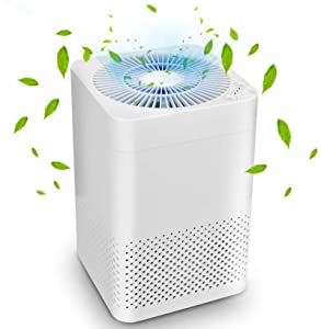5 Best Hepa Air Purifier Under $100 Reviews (Home Use 2020) 1