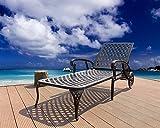 HOMEFUN Chaise Lounge Outdoor Cast Aluminum Patio Furniture Metal Backyard Wheels Chair (Antique Bronze)