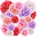 Red Pink DIY Wall Tissue Art Paper Flowers Hanging Poms Poms Kit Wedding Birthday Baby Shower Decorations, 20ct