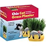 Chia Pet Snoozing Kitty, Cat Grass, Decorative Pottery Planter, Easy to Do and Fun to Grow, Novelty Gift, Perfect for Any Occasion (Contains Chia Packets for 3 Plantings)