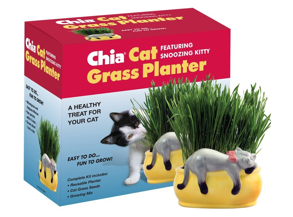 Chia CG758-01 Cat Grass Planter Snoopy Kitty