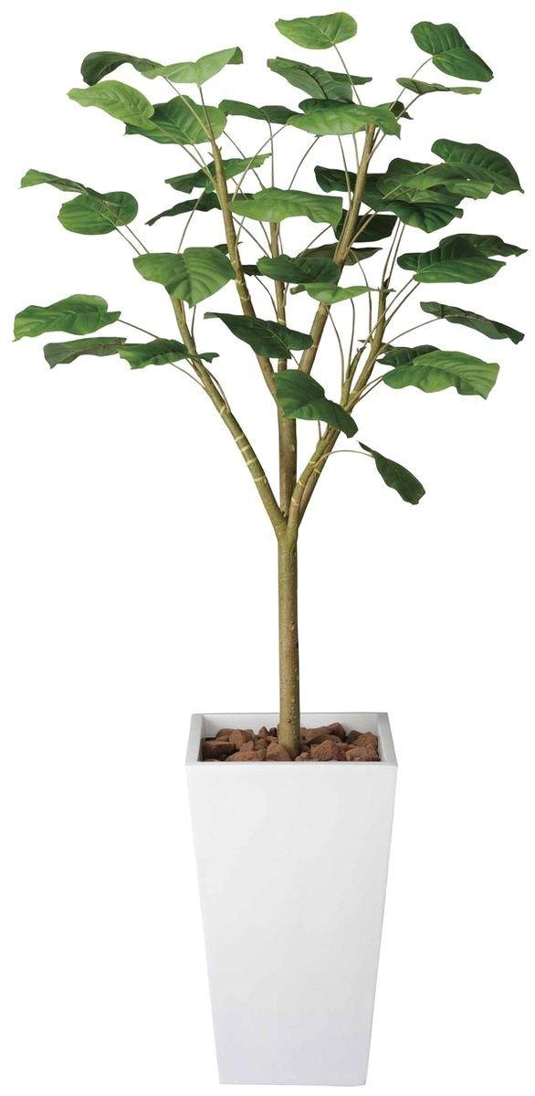 造花 観葉植物 「ART-ウンベラータ Wダブル 180cm」 光触媒(空気清浄) インテリアグリーン 鉢植え B078S6H37Y