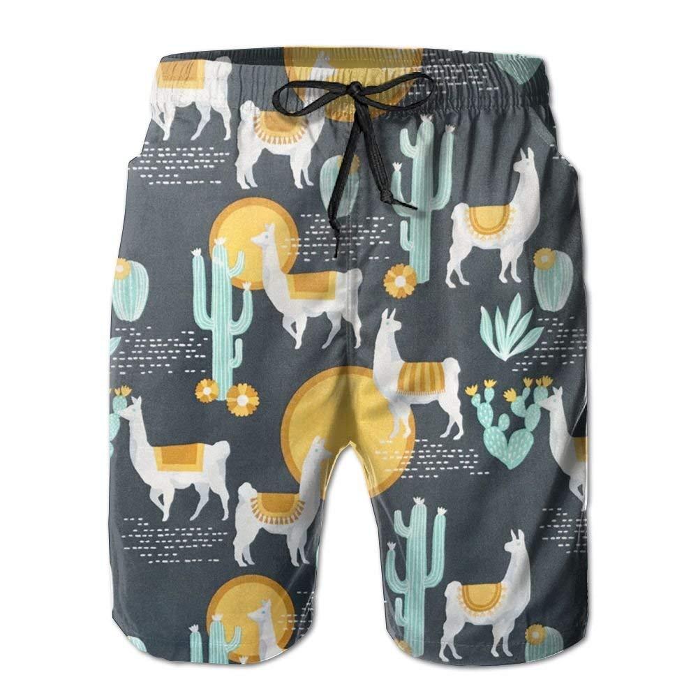 ZLRY Llama and Cactus Mens Fashion Summer Beach Pants Breathable Swim Trunks Board Shorts
