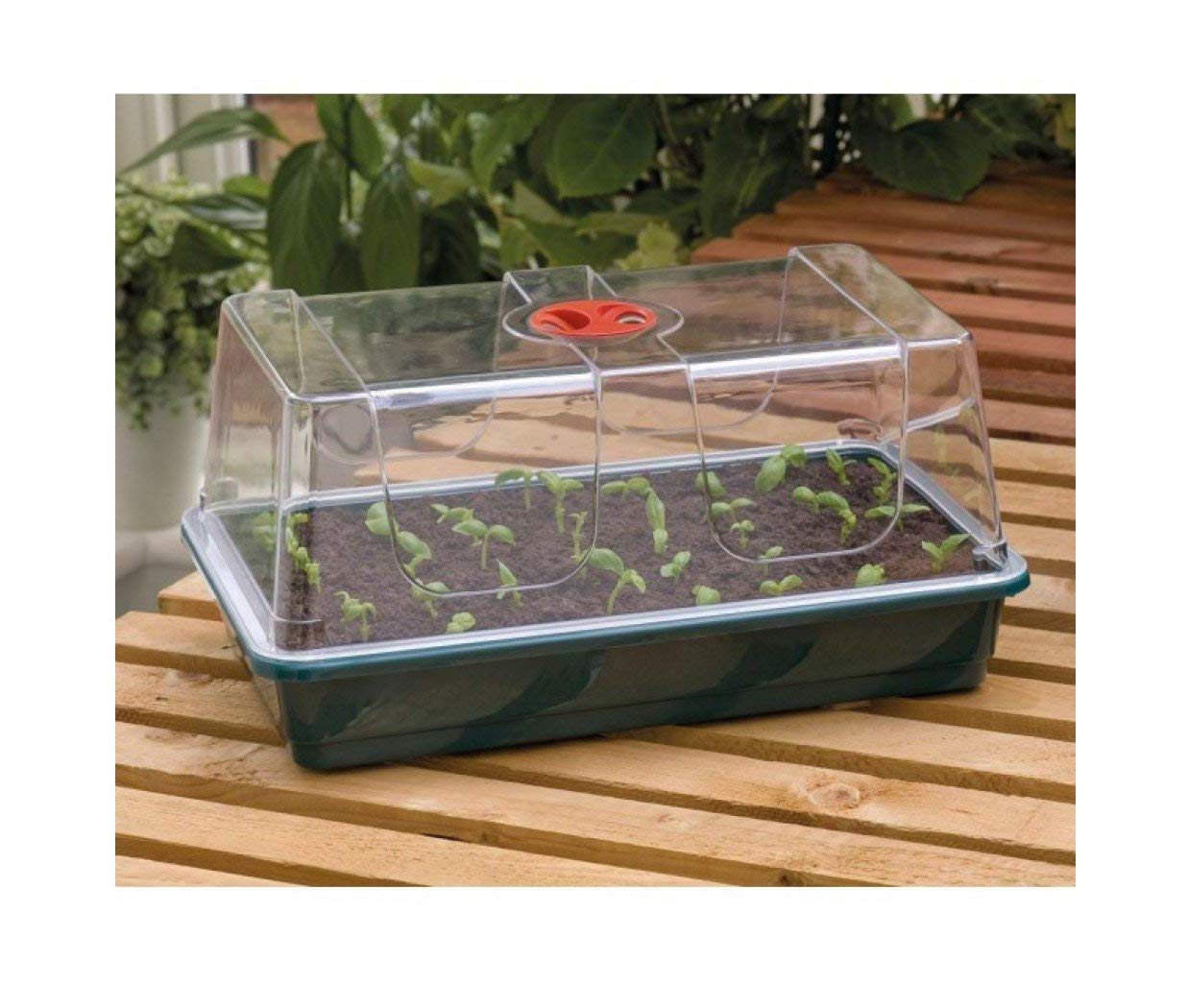 Britten & James Professional extra height unheated propagator. Uses our standard seed tray as a base but the top quality clear top has extra high sides to allow for more plant development before removing from the protection of the propagator. Simple,