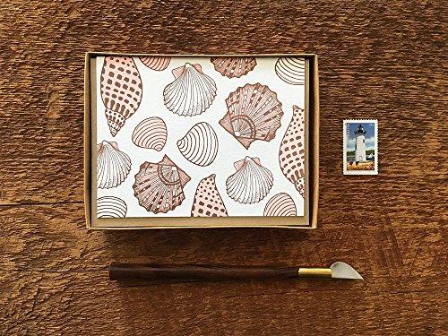 - Sea Shells, Boxed Set of 8 Folded Letterpress Cards, Blank Inside
