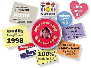 Amazon.com: Firsty Cajita para Dientes de Leche en Español (Rojo, Chica, Chico) ABF Round<: Toys & Games